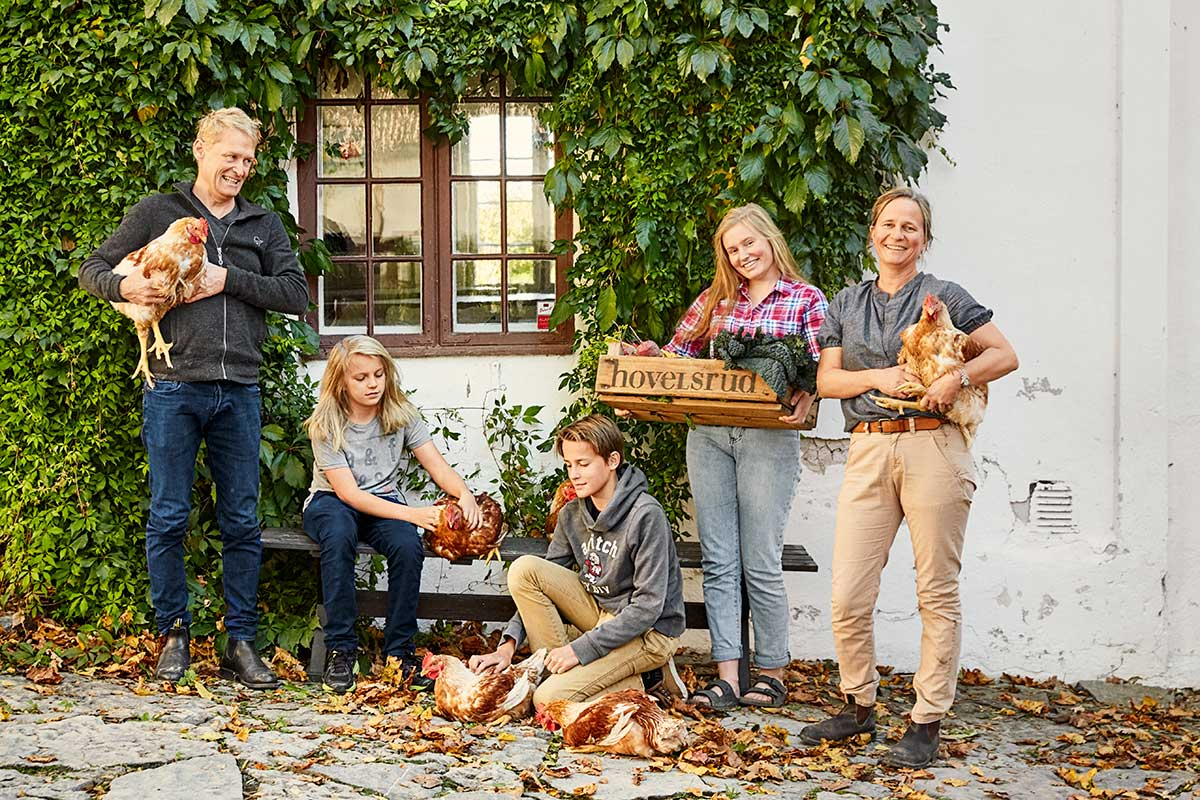 Økologiske kyllinger og den historiske hagen - Hovelsrud Gård